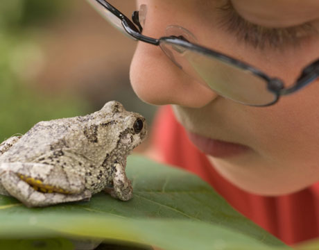 Summer Science Projects for Kids & Families