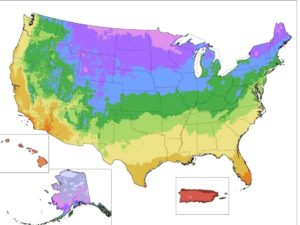 hardiness-map-7d6cf5f0c7935238fdc9d99ff68bed9947b15732-s40-c85