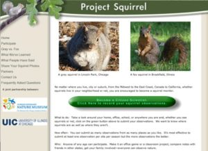 project_squirrel